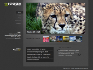 FotofolioLandscape-wordpress-freelancer-mumbai-india-theme